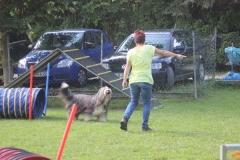 Dienstag_Hundeschule_018_resized