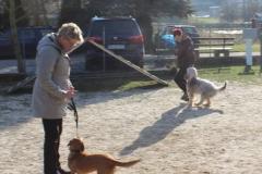 Training_Februar_2015_003_resized