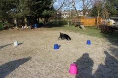 Training_Februar_2015_020_resized